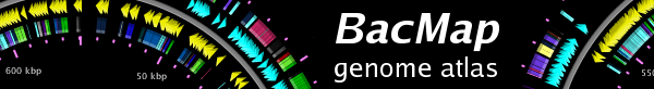 BacMap logo