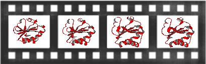 MovieMaker Header image